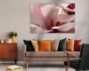 Magnolia von Marieke van Milligen