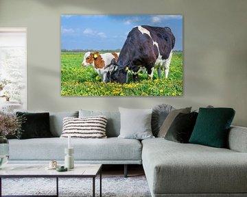 Kuh und Kalb stehen in einer Wiese mit gelbem Löwenzahn von Ben Schonewille