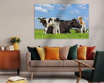 Moeder koe en groep pasgeboren kalfjes samen in groene wei van Ben Schonewille