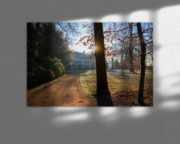 Zonlicht schijnt in de lens op Landgoed nieuw Amelisweerd