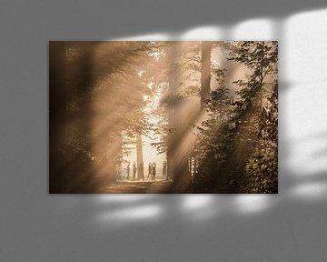 Zonnegroet! sur Arthur Puls Photography