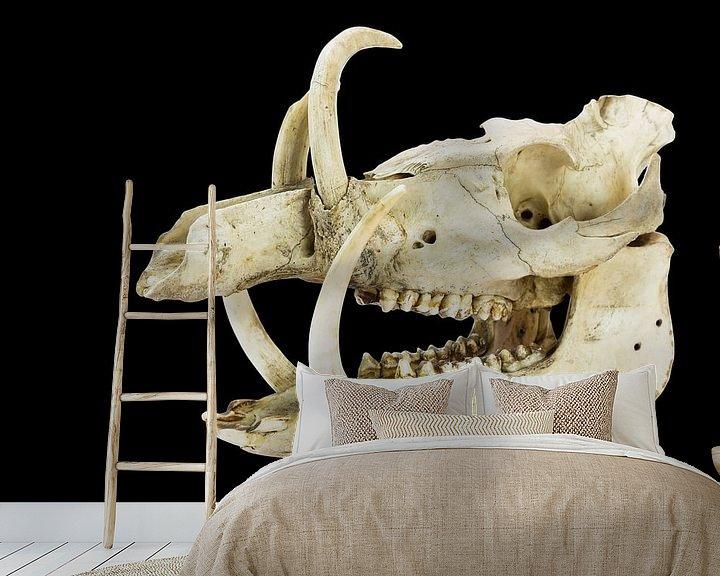 Sfeerimpressie behang: Schedel met lange slagtanden en tanden van wild zwijn op zwart van Ben Schonewille