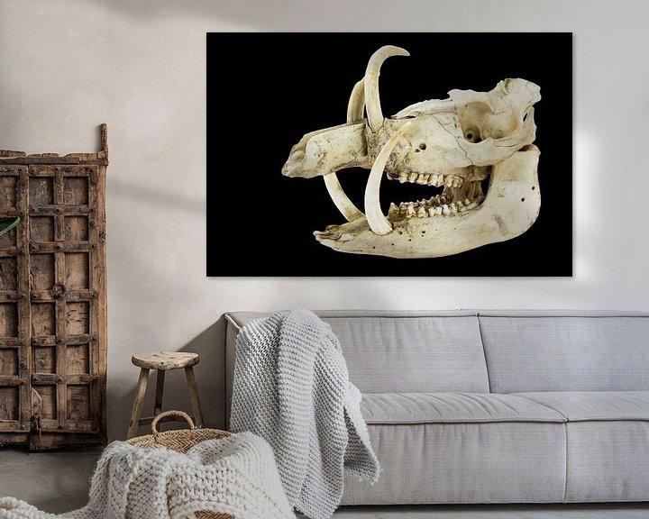 Sfeerimpressie: Schedel met lange slagtanden en tanden van wild zwijn op zwart van Ben Schonewille