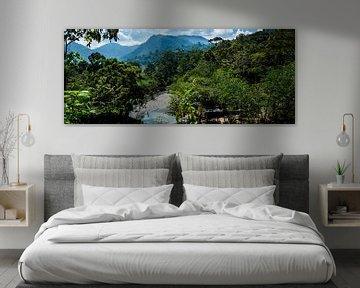 panorama rivier, panorama river van Corrine Ponsen
