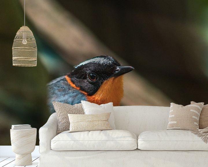 Sfeerimpressie behang: Vogel kijkend in de lens van Dennis Kluytmans