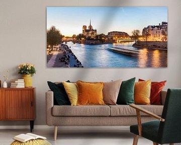 Kathedrale Notre-Dame und die Seine in Paris von Werner Dieterich