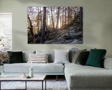into the woods van Nienke Stegeman