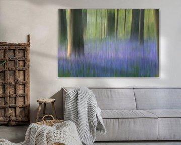 Bluebell forest von Christl Deckx