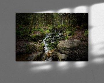 Ninglinspo Waterval Ardennen   (469417) van Wesley Van Vijfeijken