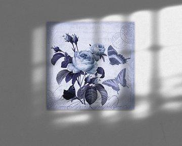 Blaue Stunde Im Rosengarten von Andrea Haase