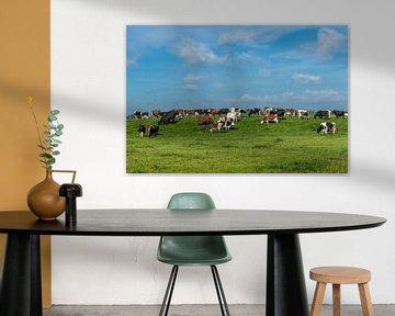 Koeien in het Friese landschap sur Yvonne van Driel