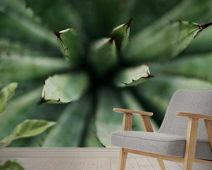 Sfeerimpressie behang: Cactus close-up van Wianda Bongen