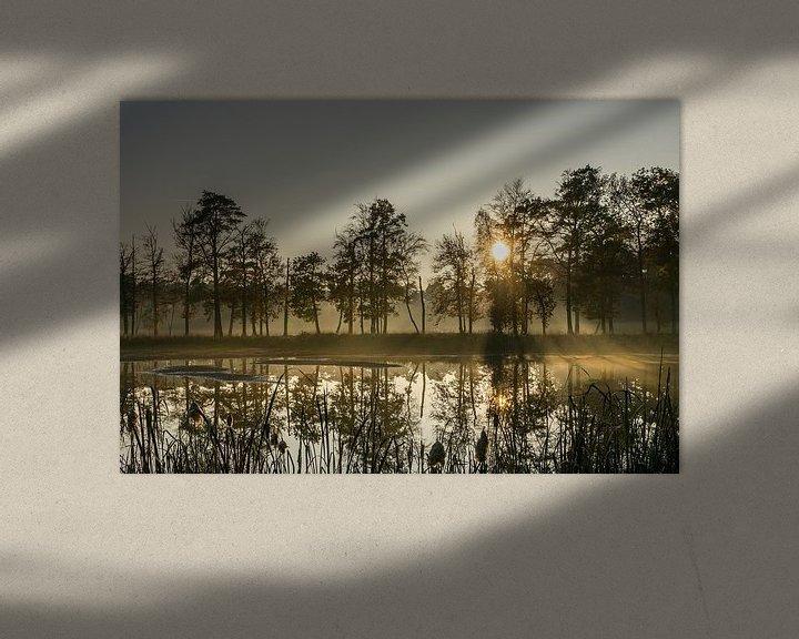 Sfeerimpressie: Avondsfeer van Marianne van der Westen