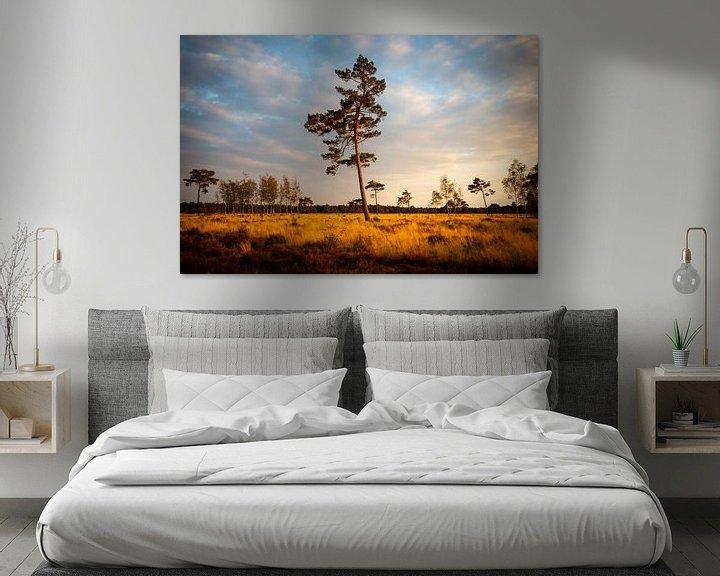 Sfeerimpressie: Grove den van Theo Klos