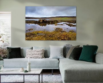 Eb bij Loch Greshornish, Isle-of-Skye Schotland