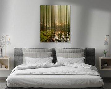 The fading forest sur Bram Laenen