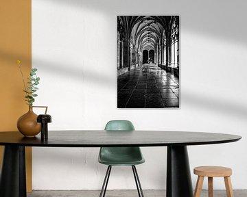 Prachtig licht in de kloostergang van de Pandhof van de Domkerk in Utrecht. Zwart-wit.