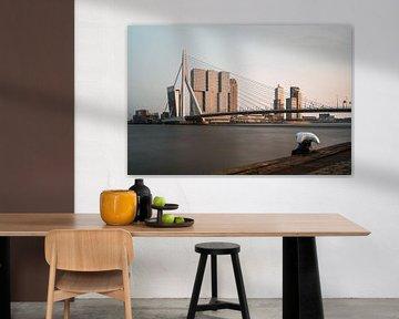 Erasmus Bridge, Rotterdam von Lorena Cirstea
