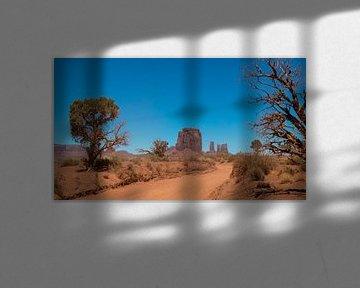 amerikanische Wüste im monument valley national park von de Roos Fotografie