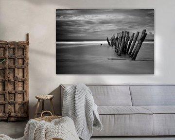 The Beach, zwart/wit versie van Truus Nijland