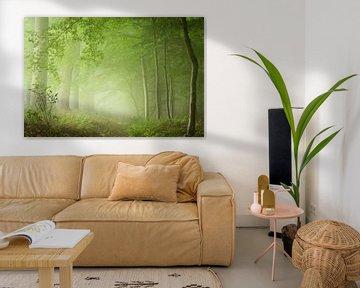 Green Mood Forest van Fabrizio Micciche