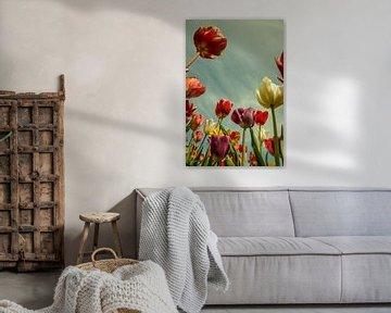 Tulpen von Wolbert Erich