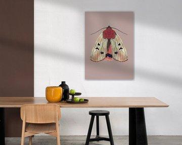 Mottencreme auf farbigem Hintergrund von Angela Peters