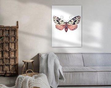 Motte mit schwarzen Flecken auf weißem Hintergrund von Angela Peters
