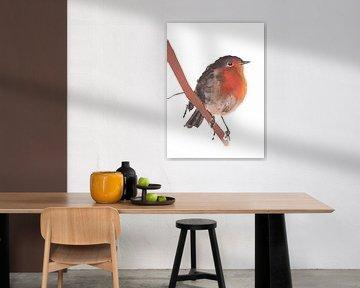 Spezielle Vogelillustration Robin Robins von Angela Peters