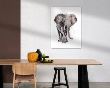 Druck eines Elefanten, spezielle Tierillustration von Angela Peters