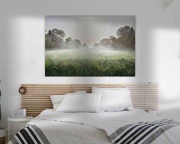 A foggy field van Elianne van Turennout