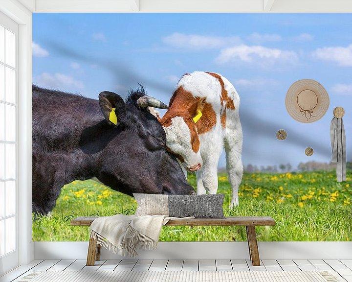 Beispiel fototapete: Kuh und neugeborenes Kalb in der grünen niederländischen Wiese mit Löwenzahn von Ben Schonewille