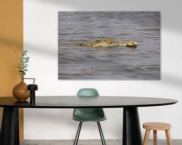 Krokodil in het Sunset Dam, kruger national park, zuid afrika van Marijke Arends-Meiring