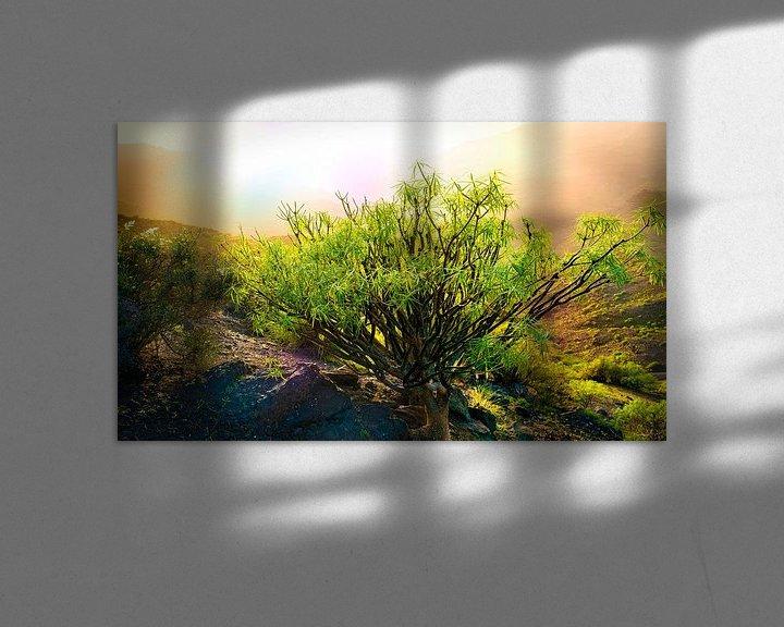 Sfeerimpressie: 0250 Canary backlight van Adrien Hendrickx