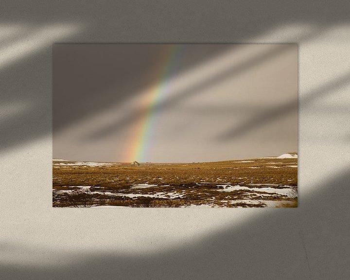 Sfeerimpressie: Kleurrijke regenboog in IJsland van Renske Breur