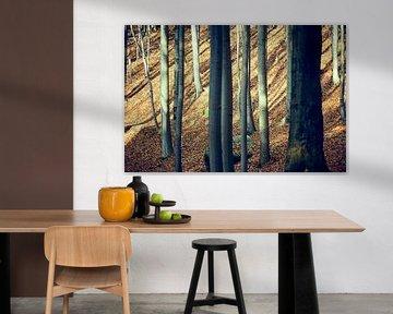 Dense deciduous forest in autumn in Saxon Switzerland van Michael Moser