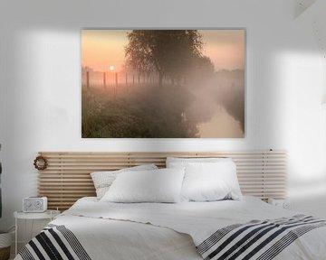 een mistige ochtend langs de beek in Menen