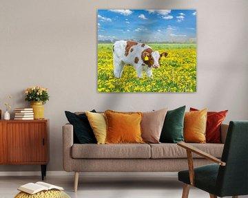 Roodbont kalfje in Hollands weiland met bloeiende gele paardenbloemen van Ben Schonewille