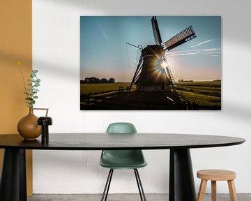 Het symbool van Nederland! von Nynke Nicolai