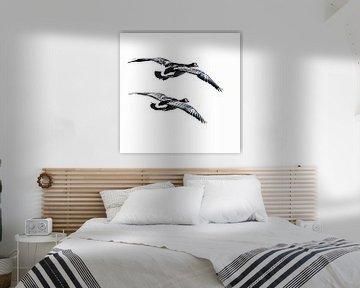 Synchrone fliegende  Seepockengänse (von hinten) von Fotografie Jeronimo
