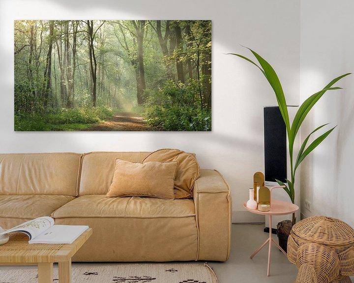 Impression: forêt de conte de fées sur Art Wittingen