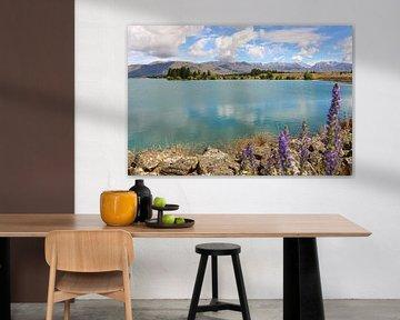 Lake Ruataniwha / Nieuw - Zeeland