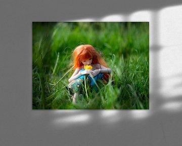 Rood harig meisje in het gras