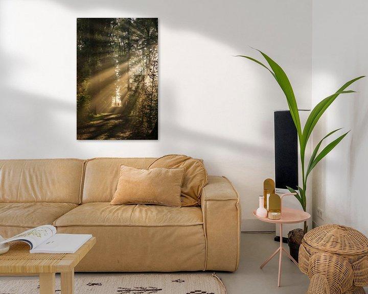 Beispiel: Zonnegroet! Zonnestralen schijnen door het bos van Amelisweerd! von Arthur Puls Photography