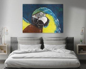 Papagei von Susanne A. Pasquay