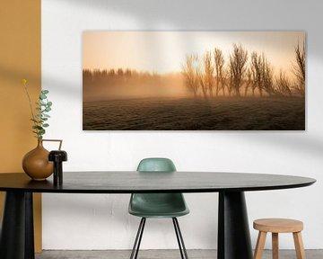 Misty Morning at Leidschendam - 1 von Damien Franscoise