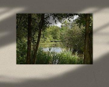 Ein Blick in die Natur von Tjamme Vis
