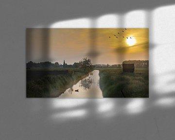 Le lever du soleil dans le Betuwe