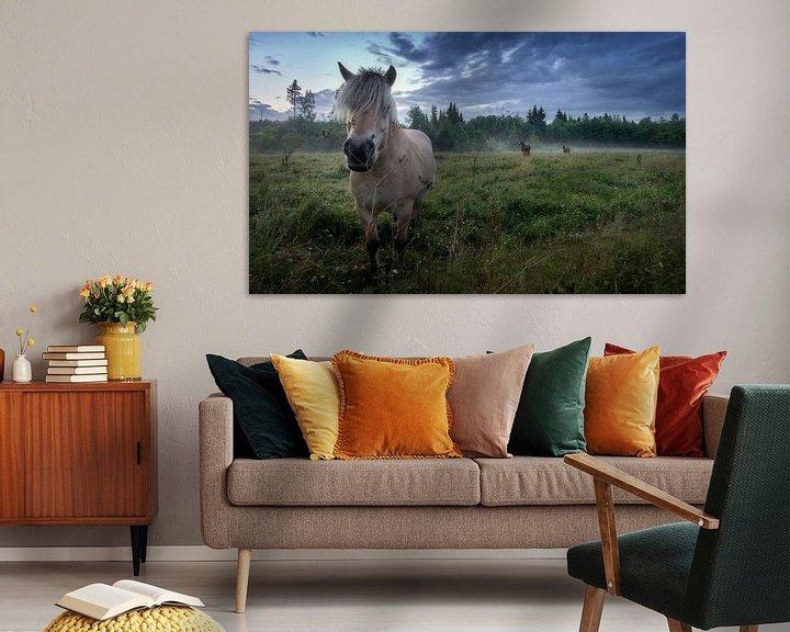 Beispiel: Horses in the mist von Bart Sallé