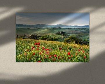 Spring in Tuscany van Michael Valjak